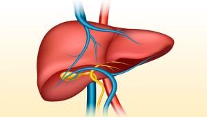 Картинка-анонс к статье Симптоматика и способы лечения портальной гипертензии